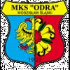 Одра Водзислав