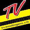 ТВ Эдинген