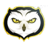 Ghost Owl Gaming